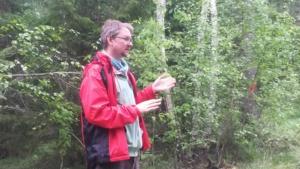 Filosofiaa metsässä2